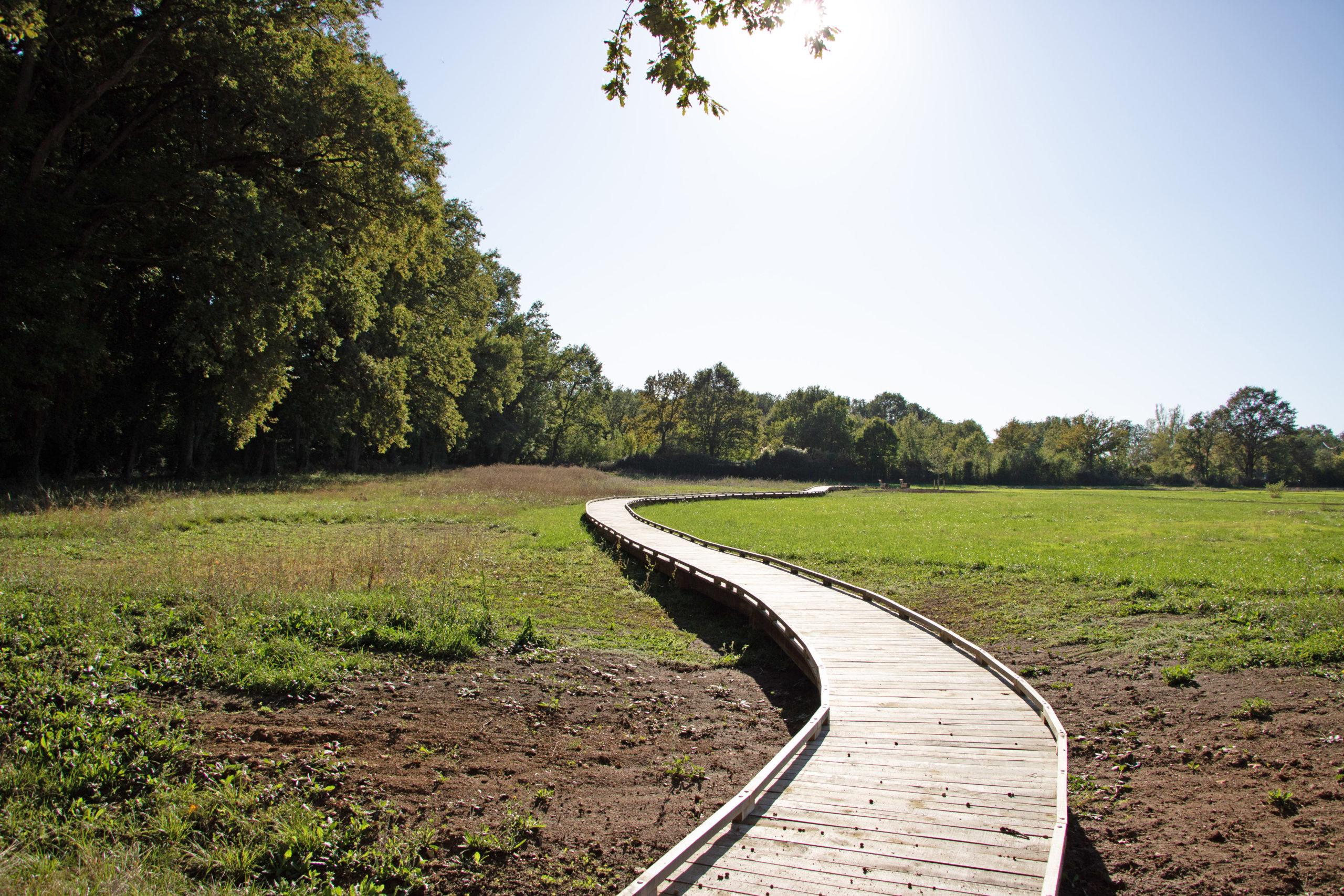 passerelle-bois-jardin-botanique-idspace